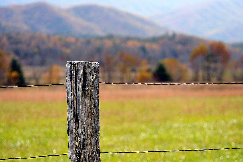 Cades Cove fence with grassy field