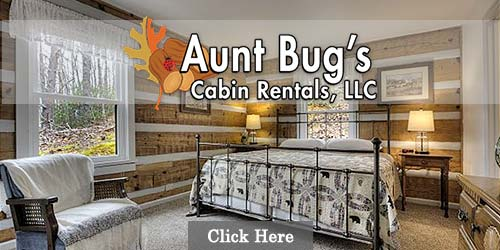 Cabin rentals by Aunt Bugs