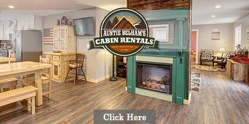 Cabins for rent in Sevier County