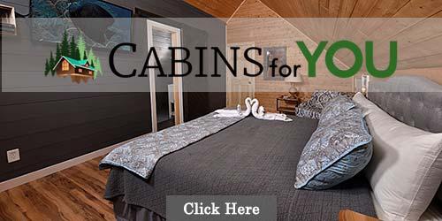 Cabins in and near Gatlinburg, TN