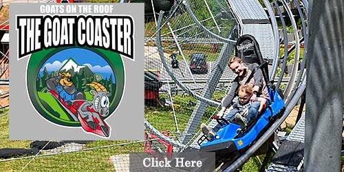 Alpine coaster in Pigeon Forge