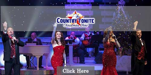 Best show in Pigeon Forge