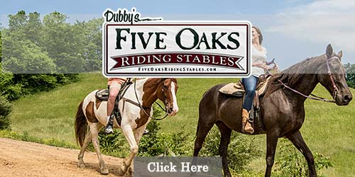 Gatlinburg Riding Stables Pigeon Forge Riding Stables