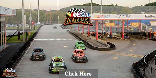 Sevierville attraction with go carts