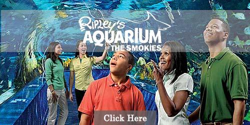 Smokies Aquarium