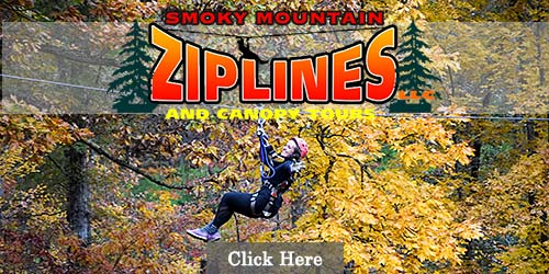 Zip line canopy tours in Pigeon Forge
