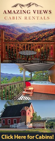 Amazing Views of the Smokies Cabin Rentals