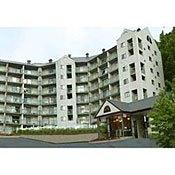 Olde Gatlinburg Rentals - Condominiums