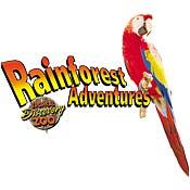 Rainforest Adventures