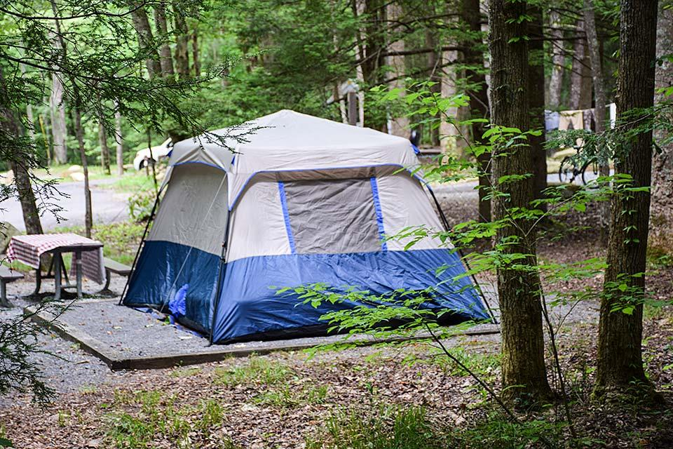 Camp in a tent and get back to nature in the mountains.