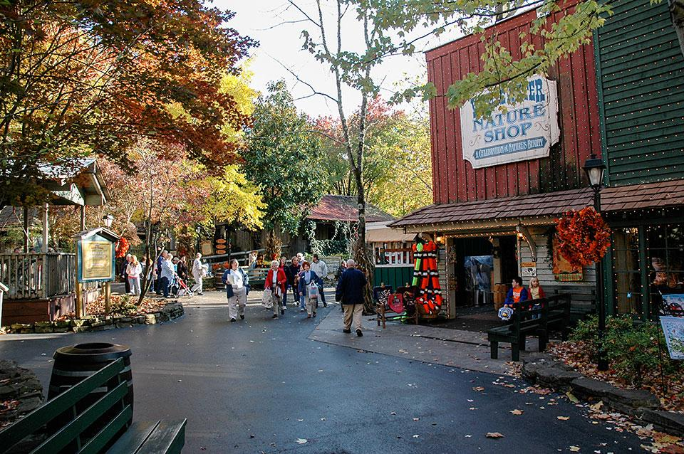 Dollywood Fall Scenery