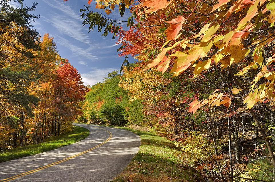Best Drives for Fall Color Smoky Mountains