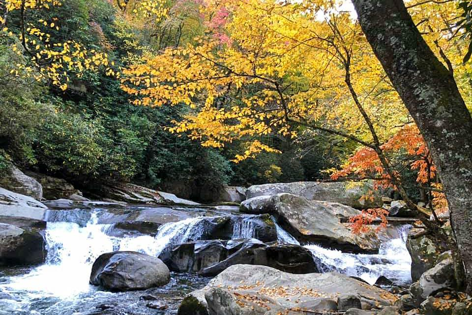 Fall scene in the Smoky Mountains