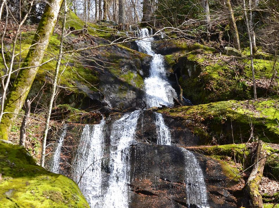 Porters Creek Trail: Fern Branch Falls