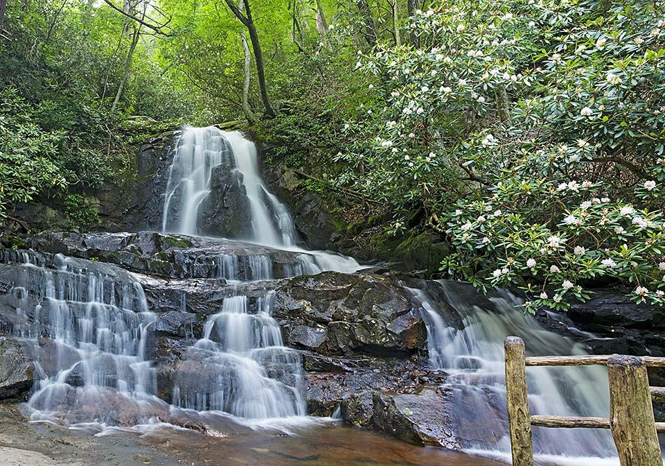 Laurel Falls in the Smoky Mountains