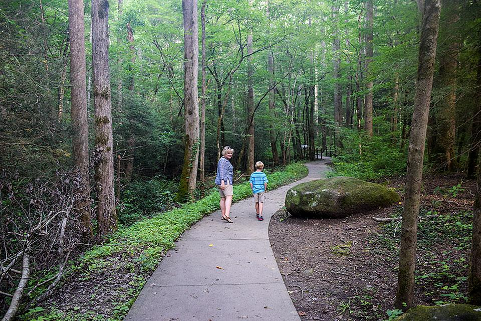 Walking Trail Smoky Mountains